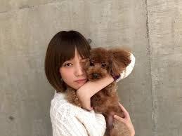 """টুইটারে 映画「アオハライド」公式: """"今日はばっさーの取材日! 馬渕洸(のようにツンデレ)役の愛犬ガブちゃんも一緒でした♪( ´▽`)  2人(?)ともホント可愛いっ(≧▽≦) 宣伝担当I #aoha_movie http://t.co/4P6IvmuY5Y"""""""